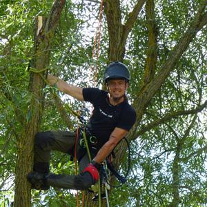 Baumpflege Österreich Kevin Koppensteiner